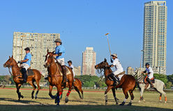 Polo In Mumbai Stock Image