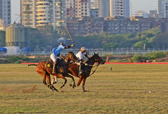 Polo In Mumbai Royalty Free Stock Photography