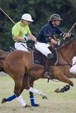 Polo orange cup 2008 Royalty Free Stock Photos
