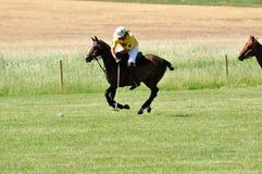 Polo på ranchen för stång U royaltyfri fotografi