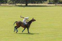 Polo Player Argentijnse kop dublin ierland Stock Foto's