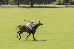 Polo player. Argentine cup. Dublin. Ireland Stock Photos