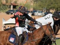Polo Player e Polo Pony Horse Immagini Stock Libere da Diritti