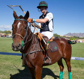 Polo Player e Polo Pony Horse Fotografie Stock