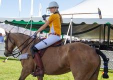 Polo Player e Polo Pony Horse femminili Fotografie Stock