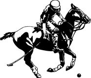 Polo Player and Horse. Line Art Illustration of a Polo Player and Horse Stock Photography