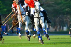 Polo Player Playing in Gelijke royalty-vrije stock afbeelding