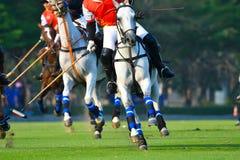 Polo Player Playing nella partita Immagine Stock Libera da Diritti