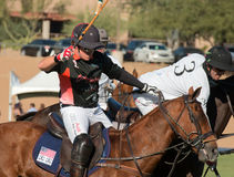 Polo Player and Polo Pony Horse Royalty Free Stock Images
