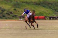 Polo Player Pony Game Action Immagini Stock Libere da Diritti