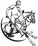 Polo pony horse and player . Equine sport club. Polo player sitting on a pony horseback and holding a long handled wooden mallet to hit a ball . The horse in stock illustration