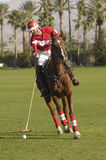 Polo Player Swinging At Ball Arkivbild
