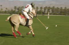 Polo Player Swinging At Ball Stock Image