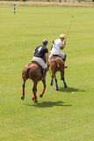 Polo players. Argentine cup. Dublin. Ireland Royalty Free Stock Photo