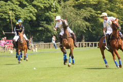 Polo players. Argentine cup. Dublin. Ireland Royalty Free Stock Images