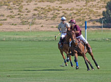 Polo Players In Charity Match Stock Images