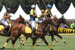 Polo Players and Horses. SYDNEY, AUSTRALIA, NOVEMBER 17: Polo players competing in the Polo in the City, Australia's only national polo series held at Centennial Stock Image