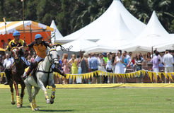 Polo Players and Horses. SYDNEY, AUSTRALIA, NOVEMBER 17: Polo players competing in the Polo in the City, Australia's only national polo series held at Centennial Stock Photo