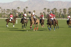 Polo Players Playing Match Immagine Stock Libera da Diritti