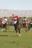 Polo Players Playing Match Royalty Free Stock Photos