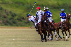 Polo Players Ponies Game Play Royaltyfri Bild