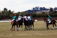 Polo Players Ponies Handshakes Game Over Royalty Free Stock Photography