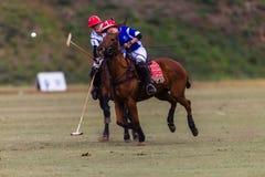 Polo Players Ponies Hitting Ball Fotografia Stock