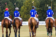 Polo Players Ponies Parade Blue Stock Image