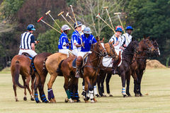 Polo Players Ponies Parade Blue Stock Images