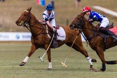 Polo Players Ponies Play Ball Fotografia Stock