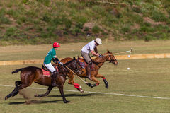 Polo Players Pony Action Ball Stock Images
