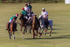Polo Players Pony Action Sticksl Royalty Free Stock Photos