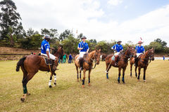 Polo Players quattro cavallini Fotografia Stock Libera da Diritti