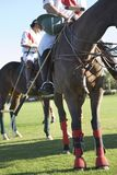 Polo Players Sitting On Horse Royalty Free Stock Photo