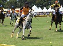 Polo Players y caballos Imagenes de archivo