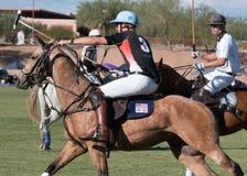 Polo Players y Polo Pony Horses Imagen de archivo