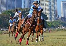 Polo Playing Lizenzfreies Stockbild