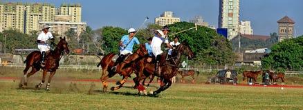 Polo Playing Lizenzfreie Stockfotografie