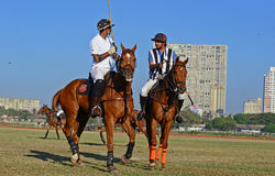 Polo Playing Lizenzfreie Stockbilder