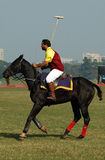 Polo playing in Kolkata-India Royalty Free Stock Photo