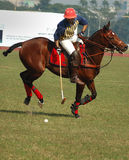 Polo playing in Kolkata-India Stock Photos