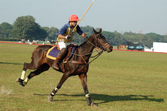Polo playing in Kolkata-India Royalty Free Stock Photography