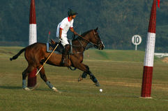 Polo playing in Kolkata-India Royalty Free Stock Images
