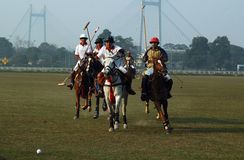 Polo playing in Kolkata-India Stock Image