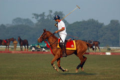 Polo playing in Kolkata-India Royalty Free Stock Photo