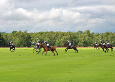 Polo Ponies and riders Royalty Free Stock Photos