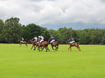 Polo Ponies and riders Stock Photo