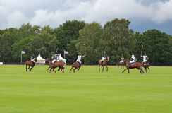 Polo Ponies and riders Stock Photography