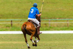 Polo Pony Player Action Stock Foto's