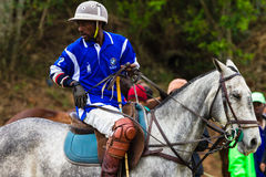 Polo Pony Rider Chukka Change Fotografie Stock Libere da Diritti